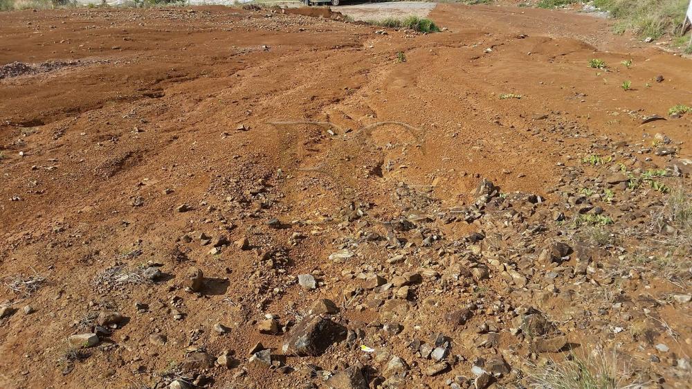 Comprar Terrenos / Padrão em Poços de Caldas apenas R$ 675.000,00 - Foto 3