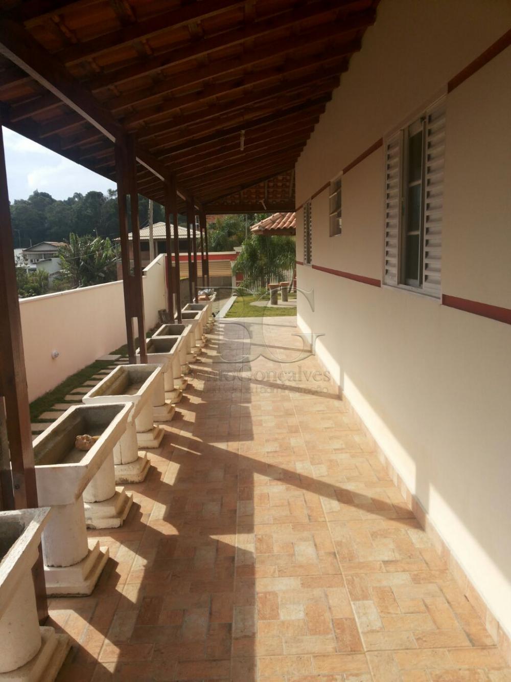 Comprar Rurais / Chácara em Laranjeiras de Caldas apenas R$ 270.000,00 - Foto 10