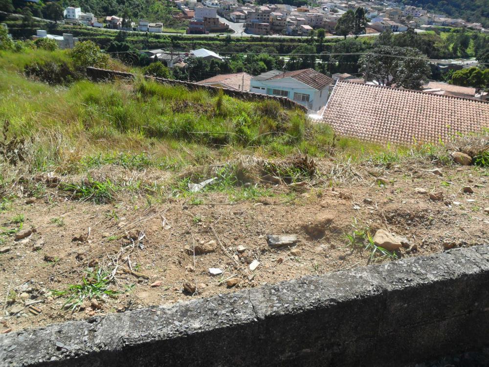 Comprar Terrenos / Padrão em Poços de Caldas R$ 230.000,00 - Foto 1