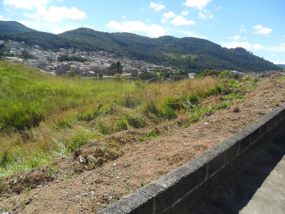 Comprar Terrenos / Padrão em Poços de Caldas R$ 230.000,00 - Foto 5