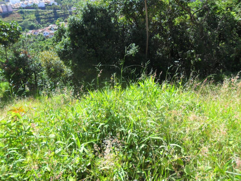 Comprar Terrenos / Padrão em Poços de Caldas R$ 290.400,00 - Foto 2