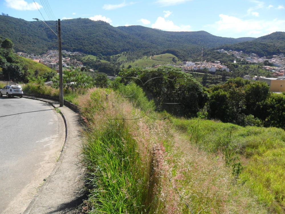 Comprar Terrenos / Padrão em Poços de Caldas R$ 290.400,00 - Foto 3