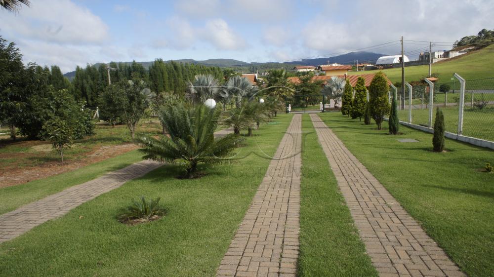 Comprar Casa em condomínio / Condomínio de Chácara em Poços de Caldas apenas R$ 1.250.000,00 - Foto 31