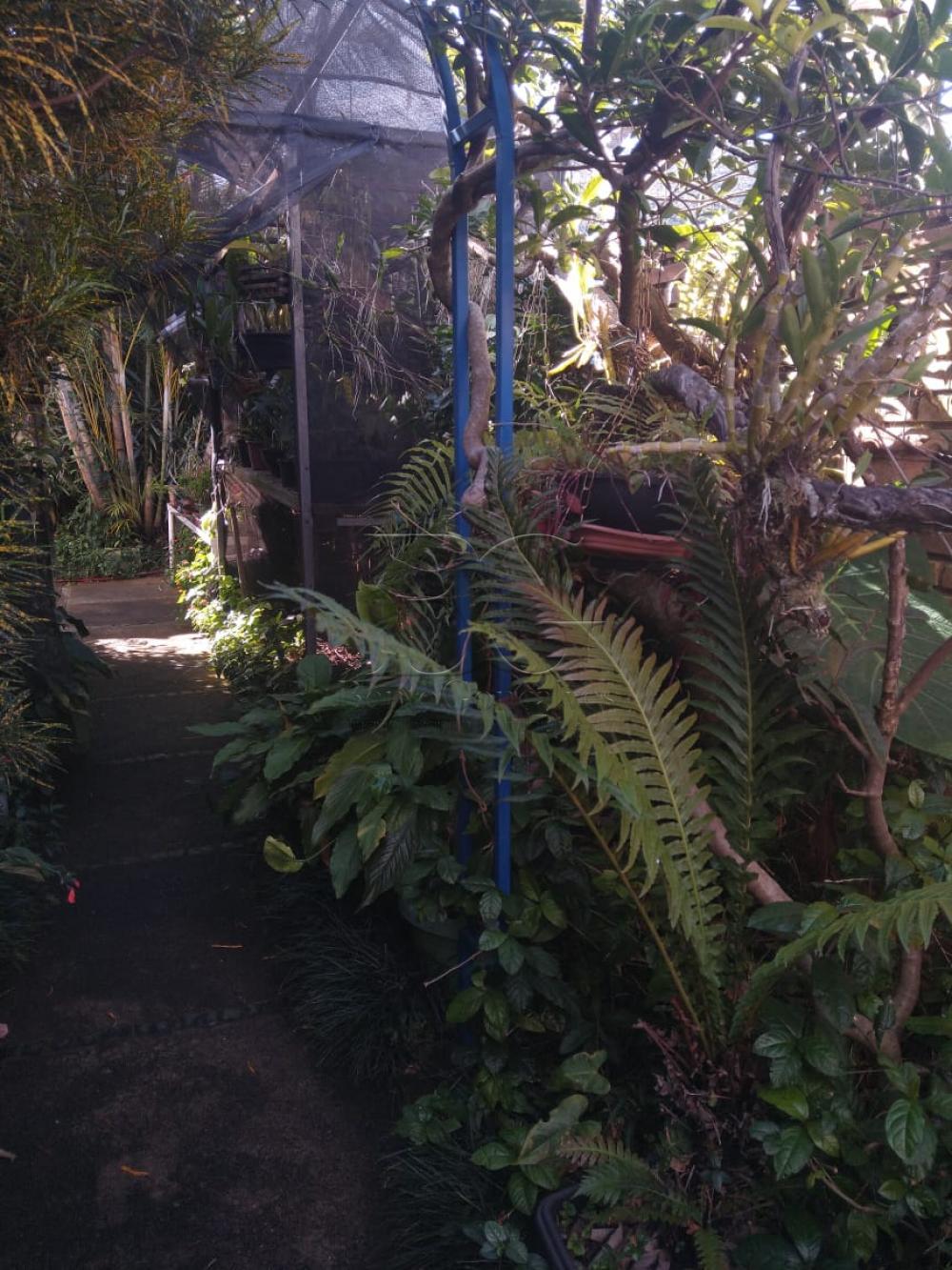 Comprar Casas / Padrão em Poços de Caldas apenas R$ 1.800.000,00 - Foto 24