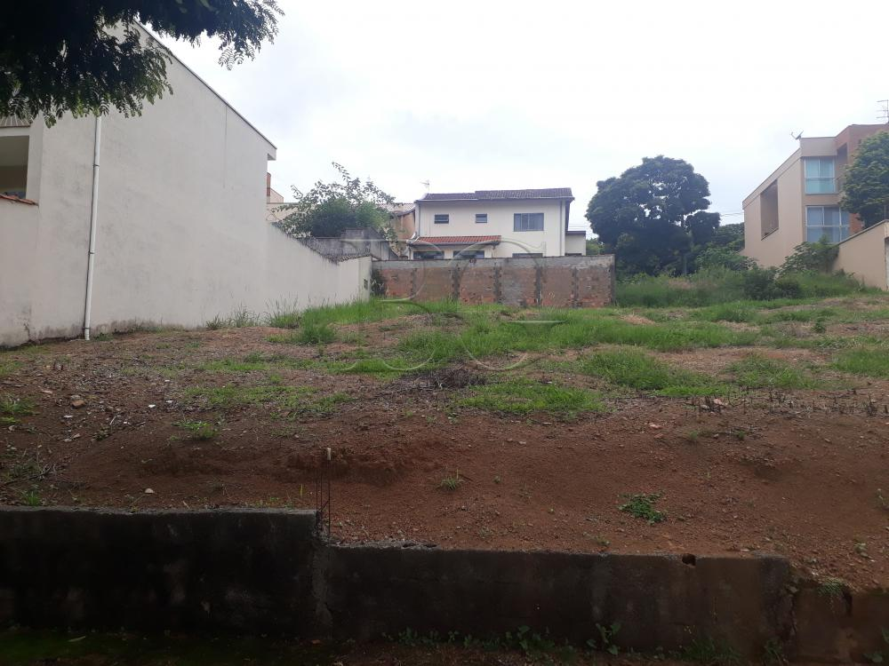 Comprar Terrenos / Padrão em Poços de Caldas apenas R$ 295.000,00 - Foto 4