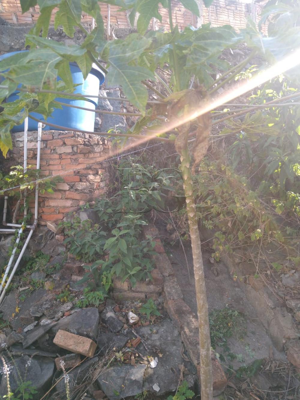 Comprar Casas / Padrão em Poços de Caldas apenas R$ 450.000,00 - Foto 18