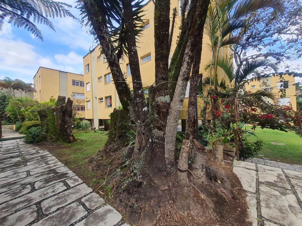 Comprar Apartamentos / Padrão em Poços de Caldas R$ 335.000,00 - Foto 25