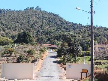 Pocos de Caldas Bortolan Casa Venda R$7.000.000,00 Area construida 24000.00m2