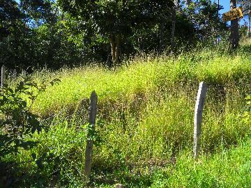 Alugar Terrenos / Padrão em Poços de Caldas. apenas R$ 150.000,00