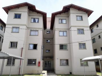 Apartamentos / Padrão em Poços de Caldas Alugar por R$500,00